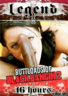 Buttloads Of Black Bangin 2  Porn Movie
