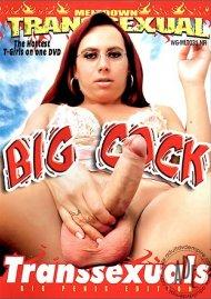 Big Cock Transsexuals Porn Movie