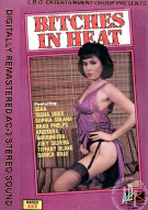 Bitches In Heat Vol. 12 Porn Video