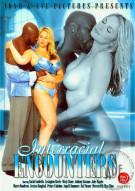 Interracial Encounters Porn Movie