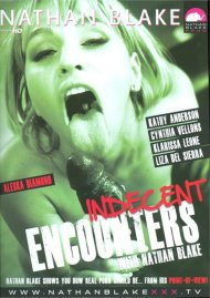 Indecent Encounters Porn Movie