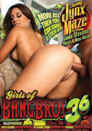 Girls Of Bangbros Vol. 36: Jynx Maze Porn Movie