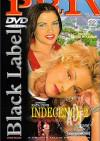 Indecency 2 Porn Movie