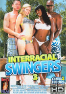 Interracial Swingers 3 Porn Video