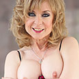 Shop Nina Hartley Pornstar Videos.